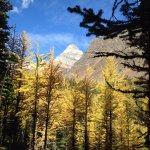 Moraine Lake Lodge Photo