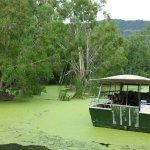 Photo of Hartley's Crocodile Adventures
