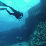 Photo de Island Divers Hawaii