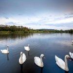 Foto de Mercure Swansea