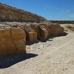 化石の発掘場所は、とても乾燥していました