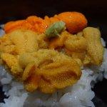 雙色海膽飯
