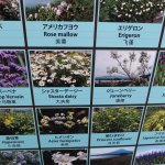 Kawaguchiko Nature House Foto