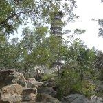 Une petite pagode que l'on laisse tranquille !