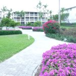 The resort grounds are beautiful and well maintained