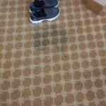 carpete velho manchado
