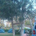 Foto de Camping Eucaliptus