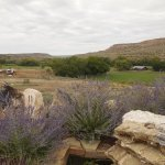 Canyon of the Ancients Guest Ranch Foto