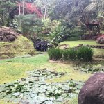 Else Kientzler Botanical Garden Foto