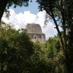 Tikal (220764102)