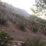 Photo de Meadowood Napa Valley
