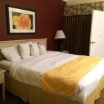Photo of Baymont Inn & Suites Tampa Near Busch Gardens