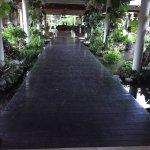 Paradisus Punta Cana Foto