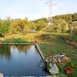 Lago a filtrazione biologica