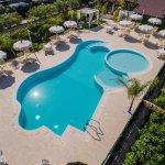 Blu Tropical Foto