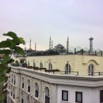 The Blue Mosque from the terrace.