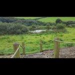 Foto de Reddivallen Farm