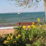 View on Lake Superior with some beautiful flowers