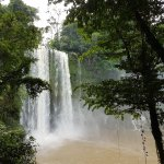 Cascadas de Misol-Ha Foto
