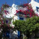Rena Valetta Studios Naxos, Greece