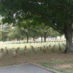 The cemetery was very solemn by its size