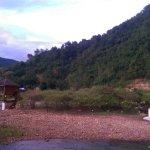 Zdjęcie 1390797