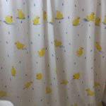 Shower curtain to die for