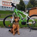Kölcsönözhető e-bike