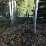 Aspen Meadows Resort Foto