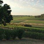 Aux Vignes de Marey Foto