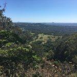 Treetops Montville Foto