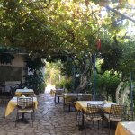 Wonderful breakfast & dinner in courtyard setting under the grape vine