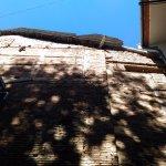 Nest Hostel Tbilisi의 사진