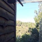 Tsala Treetop Lodge Foto