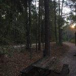 Sleepy Hollow RV Park