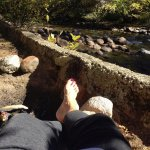 River Spruce Foto