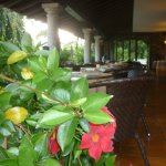 Foto de Hotel Villa Edy