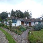Las Palmeras Inn Foto