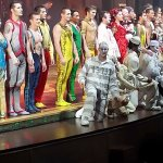 The cast/performers