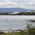 Foto de De Hoop Nature Reserve