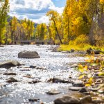 Rock Creek in the Fall