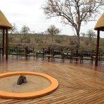 Bilde fra Hoyo-Hoyo Safari Lodge