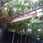Atrapasueños Dreamcatcher Hotel Foto
