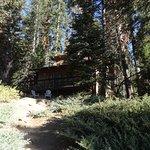 Dandy's Cabin