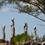 Genesis (Genisis) Garden / Sacred Space - Clifton Heritage National Park (Bahamas) Acommon1