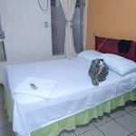 Photo of Hotel Villa Margarita