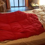 blanket without cover sheet