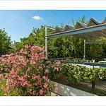 Terrasse avec vue sur le jardin fleuri