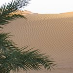 Auberge Dunes D'or Foto