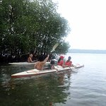 This photo was captured by another friend on the way to the mangrove area for the kayak activity